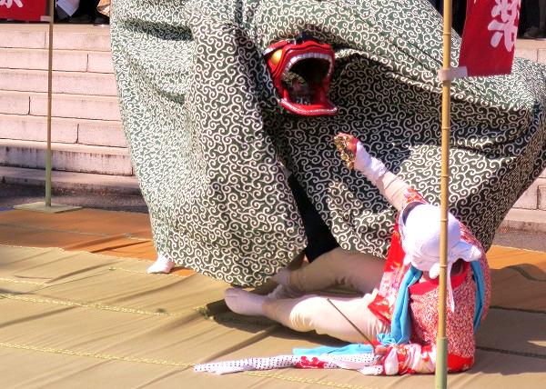 獅子舞 福島 福田十二神楽 19