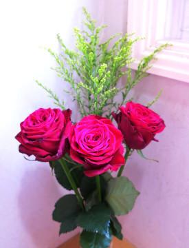 rose 赤いバラ 4