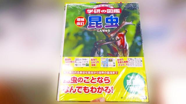 書籍:昆虫図鑑