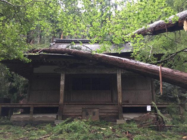 高山寺 金堂 2018年9月 台風 被害
