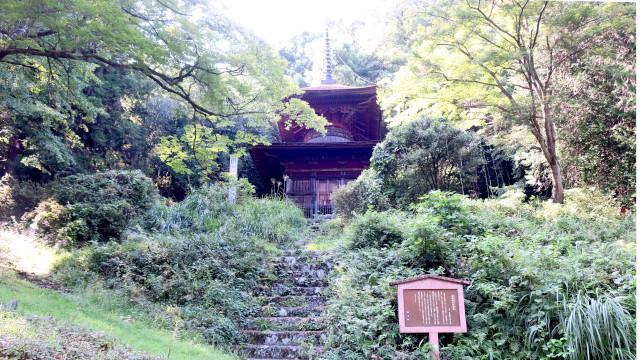 金鑚神社 2021-08 多宝塔