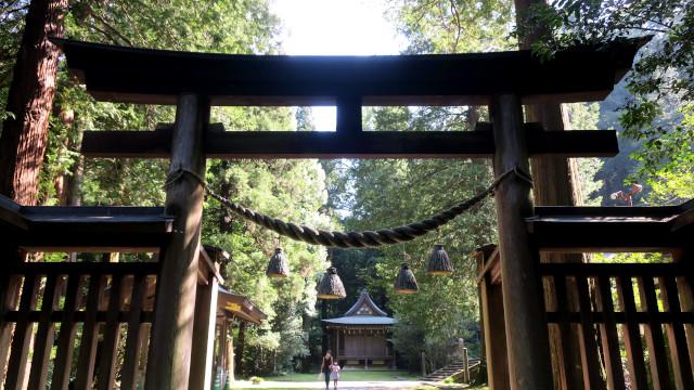 金鑚神社 2021-08 内鳥居