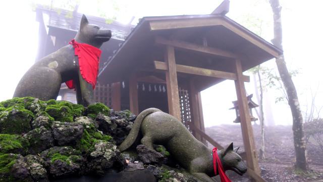 三峯神社 御仮屋 御眷属 狛犬 ん